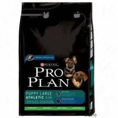 Proplan Puppy Large Breed Lamb & Rice 14KG �ok