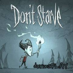 Don't Starve - Steam Global CD Key - Dont Starv