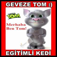 Konu�an Kedi Tom,Talking Tom Cat Oyuncak Kedi