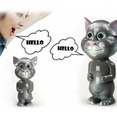 Konu�an Kedi Talking Tom Cat