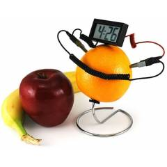 Fruit Clock: Meyve Saati