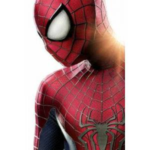 The Amazing Spider-Man 2 Poster (32x45)