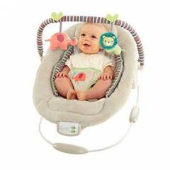 Bright Starts 60216 Comfort Harmony Cozy Kingdom