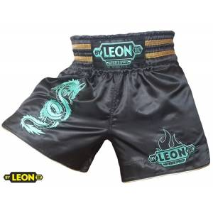 By Leon Kick Boks ve Muay Thai �ortu Ejderhal�
