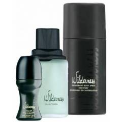 AVON WILDERNESS EDT 100 ML 3L� ERKEK PARF�M SET