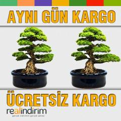Bonsai Ekim Kiti (Kara�am)