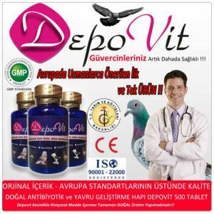 Depovit 500 Tablet Do�al Vitamin ve Antibiyotik