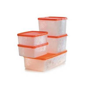 TUPPERWARE Antartika 5'li Set