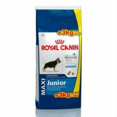 Royal Canin Maxi Junior K�pek Mamas� 18 Kg