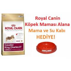 Royal Canin Dogs Adult Cavalier King Charles Irk