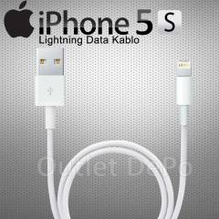 Apple iPhone 5 5S 5C Orjinal Usb Data Kablosu