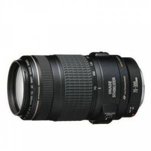 Canon EF 70 300mm f/4.5 5.6 DO IS USM