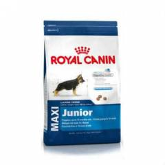 Royal Canin Maxi Junior 10 kg �OKKKKKK F�YATA