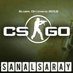 Counter Strike Global Offensive Steam Csgo CDKey