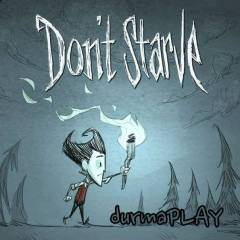 Don't Starve - Steam Global CD Key- Dont Starve