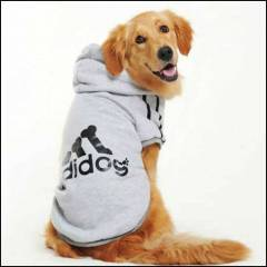 GREY SWEATSHIRT 4 BIG DOGS ( K�pek k�yafeti)