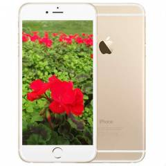 iPHONE 6 16GB GOLD ORJ�NAL,ADINIZA FATURA