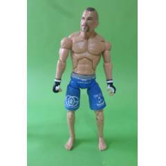 UFC Ultimate Fighting wwe CHUCK LIDELL