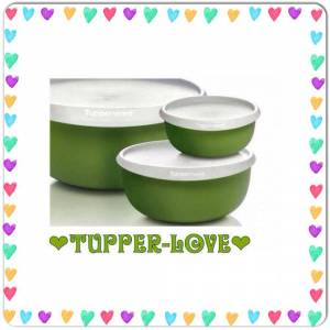 TUPPERWARE YONCA M�N� SET S�TEDE TEK 2 BOY