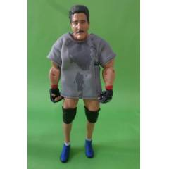 UFC Ultimate Fighting wwe Dan severn