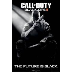 Maxi Poster - Call of Duty Black Ops II Cover