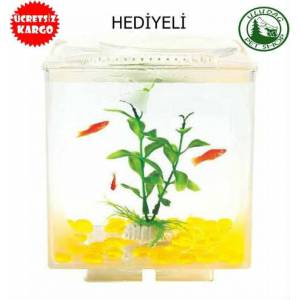 RESUN APPLE W�NDOWS 15x15x18 FANUS Hediyeli