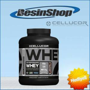 Cellucor Whey Protein 1836 Gr