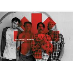 Maxi Poster - Red Hot Chili Peppers - Red Asteri