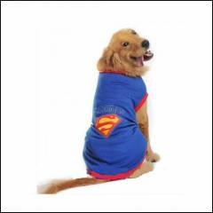 FOR BIG DOGS Superman Tshirt Köpek kıyafeti