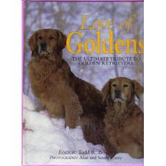 LOVE OF GOLDENS-GOLDEN K�PEKLER�