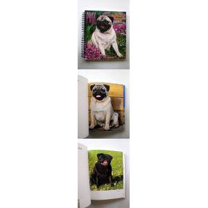 YEAR 2000 PUGS WEEKLY ENGAGEMENT CALENDAR