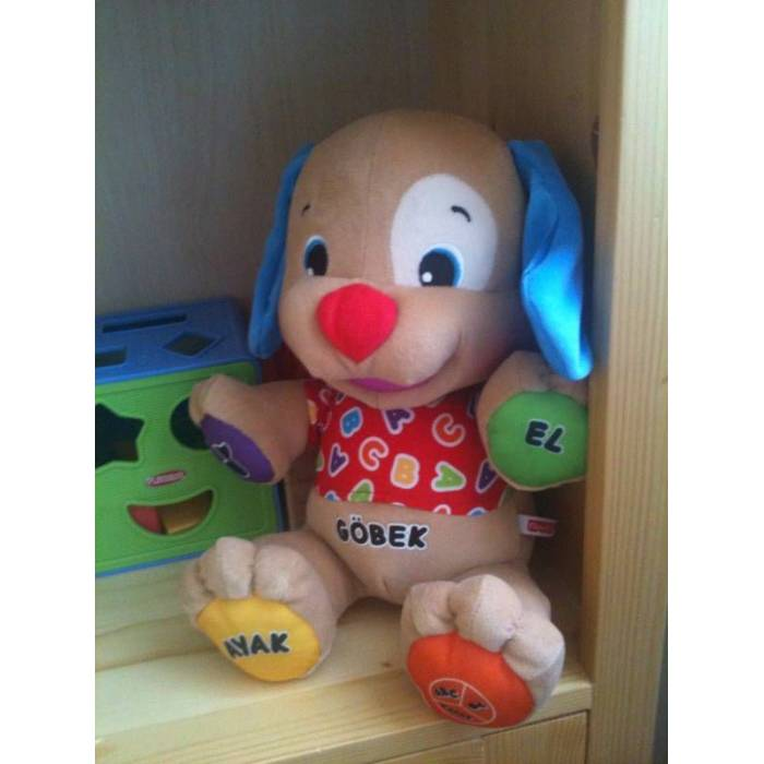 Fisher Price Konu�an K�pek