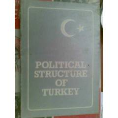 POLITICAL STRUCTURE OF TURKEY