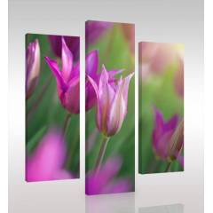 FLOWERS 3 Par�al� Canvas Tablo