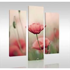 PINK DREAM 3 Par�al� Canvas Tablo
