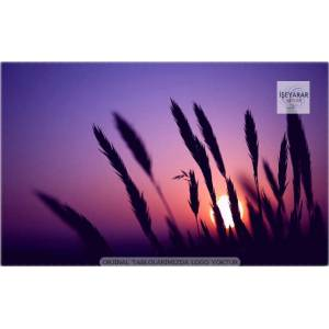 KARGO DAH�L 100x70 CANVAS TABLO MANZARA PLANTS18