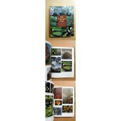 THE TROPICAL LOOK AN ENCYCLOPEDIA OF LANDSCAPE P