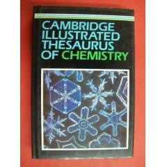 *Cambridge Illustrated Thesaurus Of Chemistry