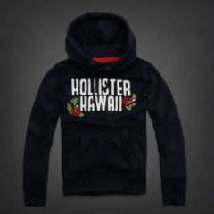 Hollister Kap�onlu SWEATSH�RT(147)