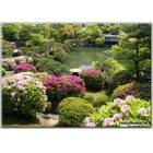 100X70 KANVAS TABLO GARDENS POND KOBE JAPAN SHRU