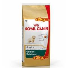 Royal Canin Golden Retriever Puppy Yavru K�pek M