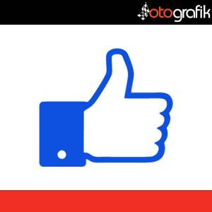 OTOGRAFİK - FACEBOOK LIKE DISLIKE OTO STICKER