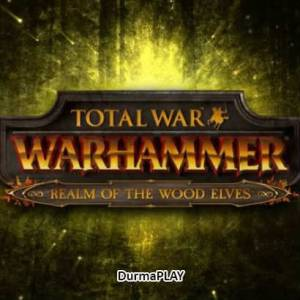 Total War Warhammer Realm of The Wood Elves PC Steam