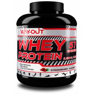 WAY-OUT Whey Protein