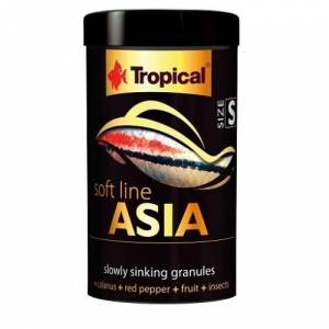 TROPICAL ASIA S SİZE 100 ML