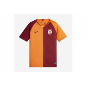 Nike Breathe Çocuk Galatasaray SK Home Stadium 919239-837