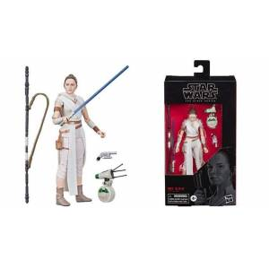Star Wars Rey and D-O