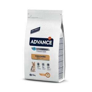 Advance Dog Yorkshire Terrier 15 Kg