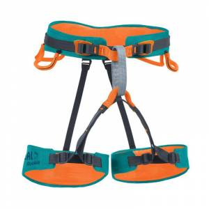 BEAL ROOKIE COCUK HARNESS