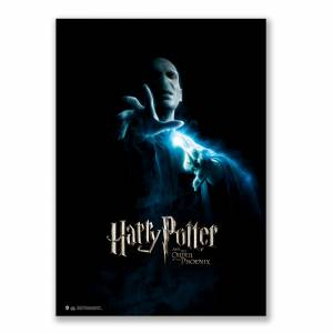 Harry Potter and Order of the Phonix  Voldemort Afiş